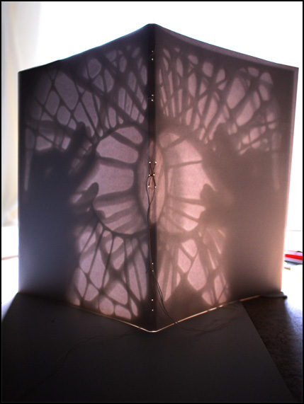 Shadowplay on backview of Seed of Thought