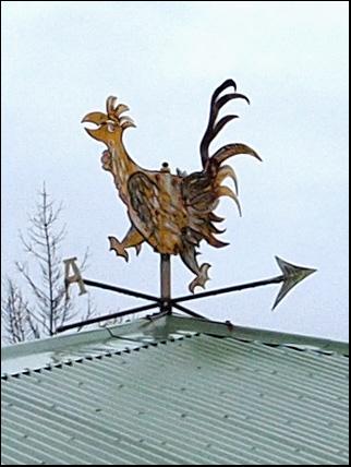 weathercock in Reykjavik