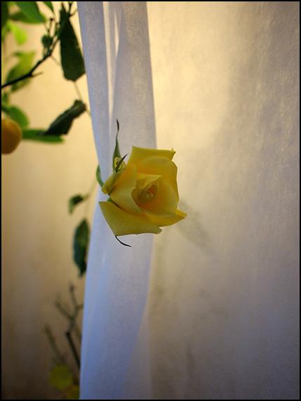 årets sista ros